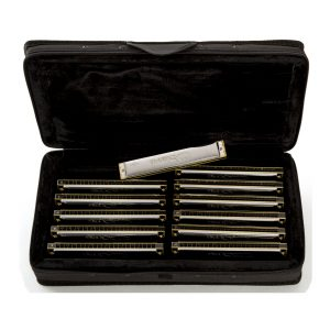 Dales Song Tremolo 12 Set Harmonicas Direct